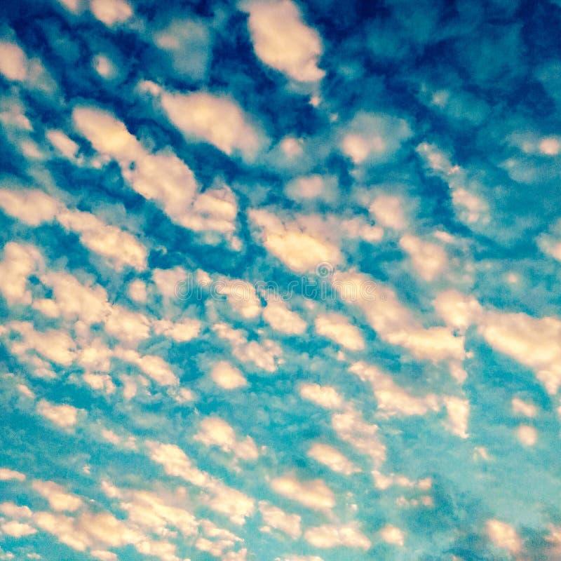 Sirus-Wolke auf blauem Himmel lizenzfreie stockfotografie
