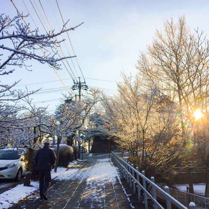 Sirva caminar solamente en el camino en nieve del invierno foto de archivo