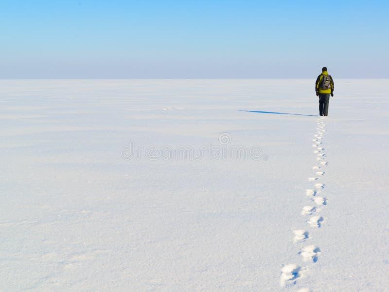 Sirva irse en el campo de nieve sin fin imagenes de archivo