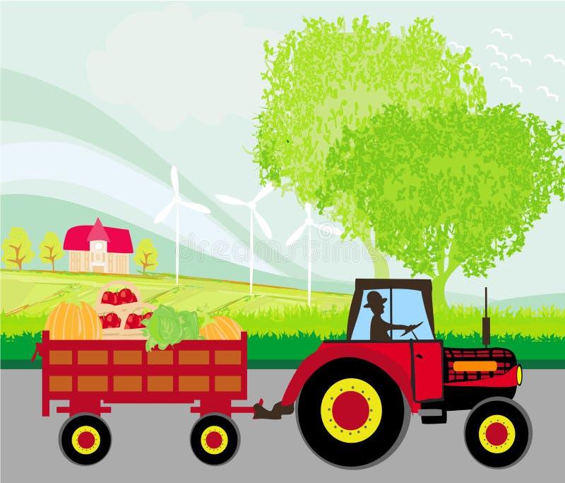 Sirva la conducción de un tractor con un remolque lleno de verduras stock de ilustración