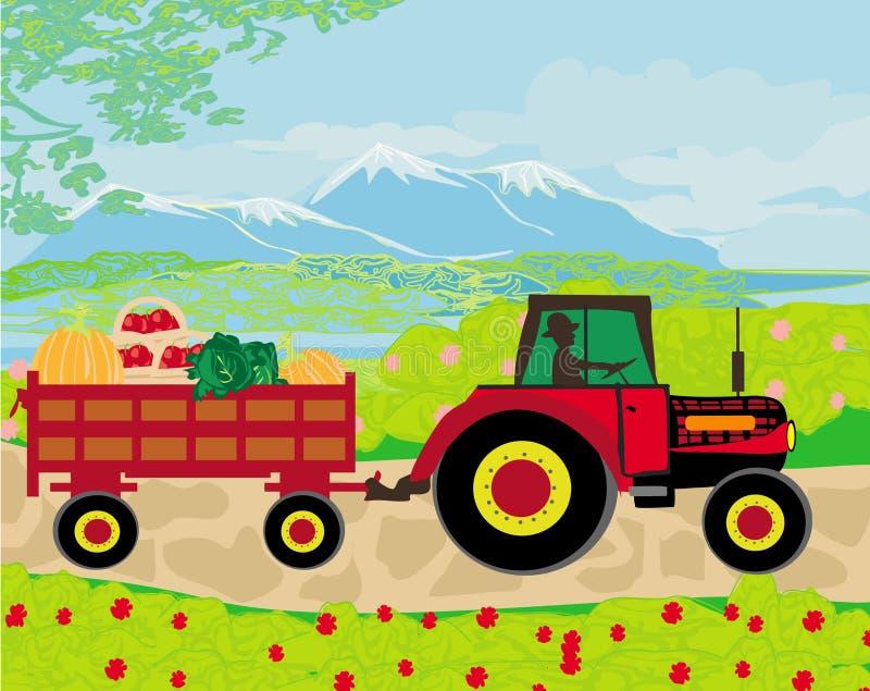 Sirva la conducción de un tractor con un remolque lleno de verduras ilustración del vector