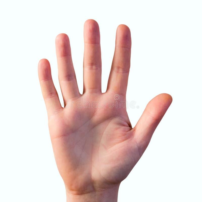 Sirva la mano del ` s que estira hacia fuera aislado en blanco fotografía de archivo