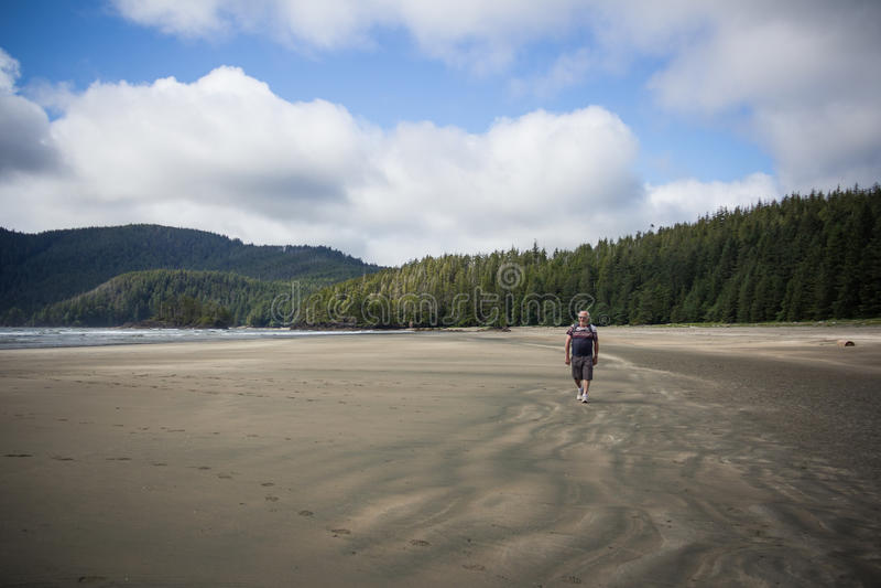 Sirva la playa que camina en San Josef Bay cerca del puerto resistente, británicos Colu imagen de archivo