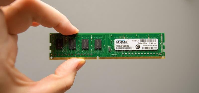 Sirva llevar a cabo la nueva RAM por el micrón por crucial imagen de archivo libre de regalías