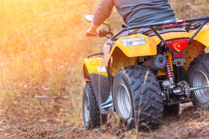 Sirva montar un quadbike de ATV en un ingenio hermoso del bosque del pino del otoño imagen de archivo libre de regalías
