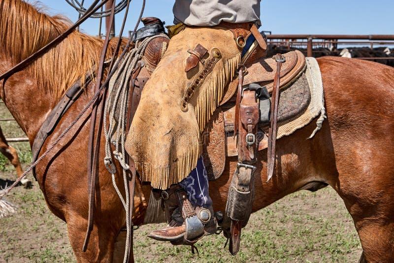 Sirva sentarse en la silla de montar atada al caballo marrón imagen de archivo libre de regalías