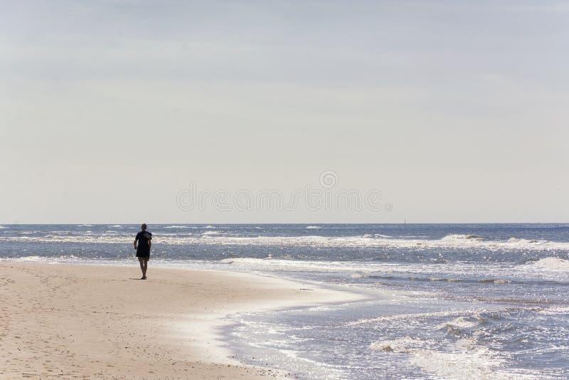 Sirva solamente caminar a lo largo de la costa costa holandesa en un día soleado con la luz del sol que refleja en el agua imagen de archivo
