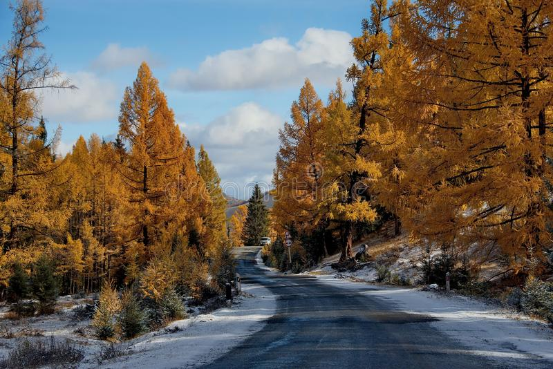 Sista höst i de Altai bergen fotografering för bildbyråer