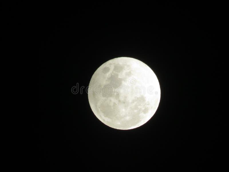 Sista Nite fullmånefas från Panama arkivbild