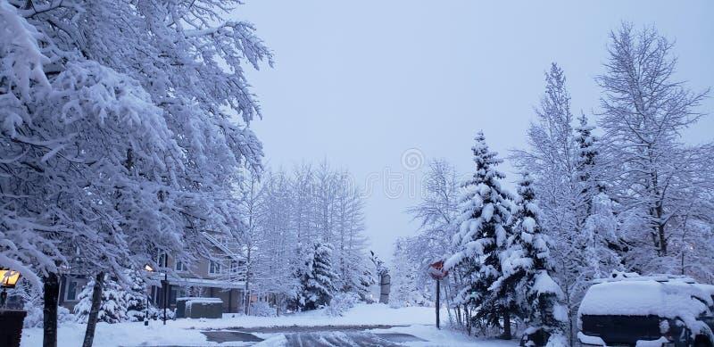 Sista snöbreckinridge royaltyfri bild