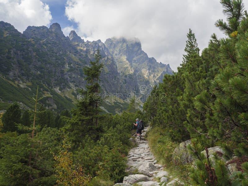 Sistani, Wysoka Tatrzańska góra, Wrzesień 13, 2018: Młodych człowieków turystyczny wycieczkować przy pięknym natura śladem przy w obraz royalty free