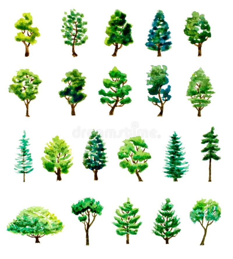 Sistema árboles dibujados mano de la acuarela de diversos stock de ilustración