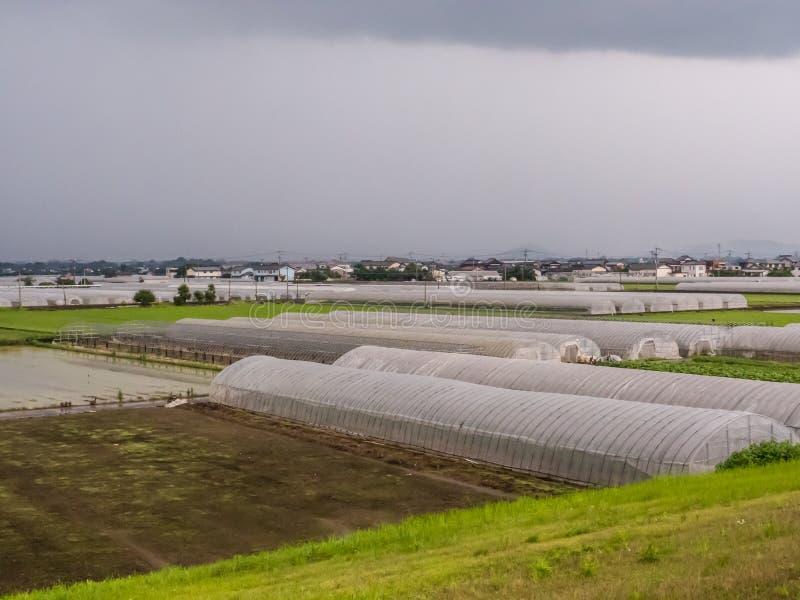Sistema agrícola de la tierra de cultivo en Japón imagenes de archivo