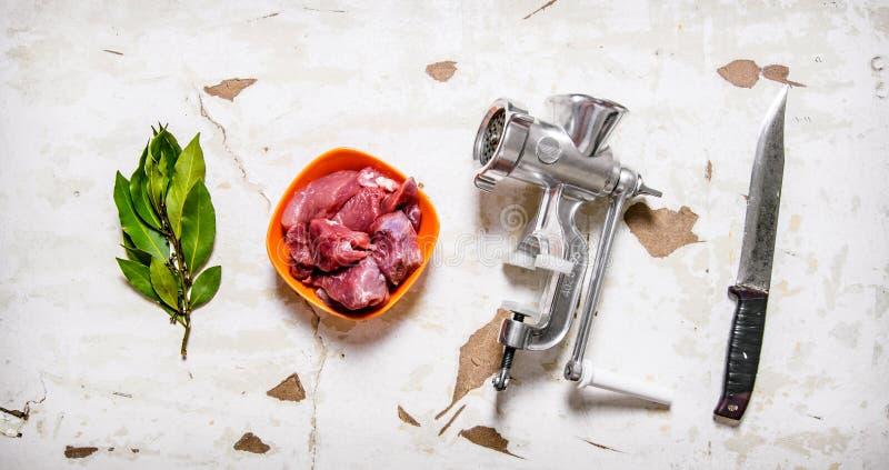 Sistema - amoladora, carne cruda, cuchillo de talla, hoja de laurel fotografía de archivo libre de regalías