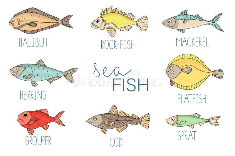 Sistema coloreado del vector de pescados ilustración del vector