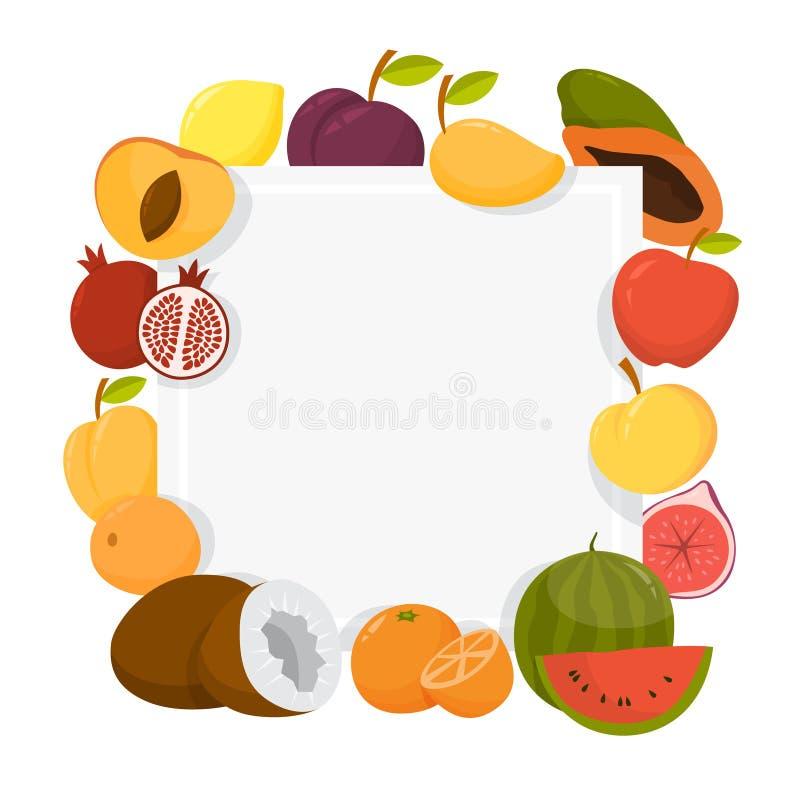 Sistema colorido del marco de la fruta Colecci?n de fondo tropical libre illustration