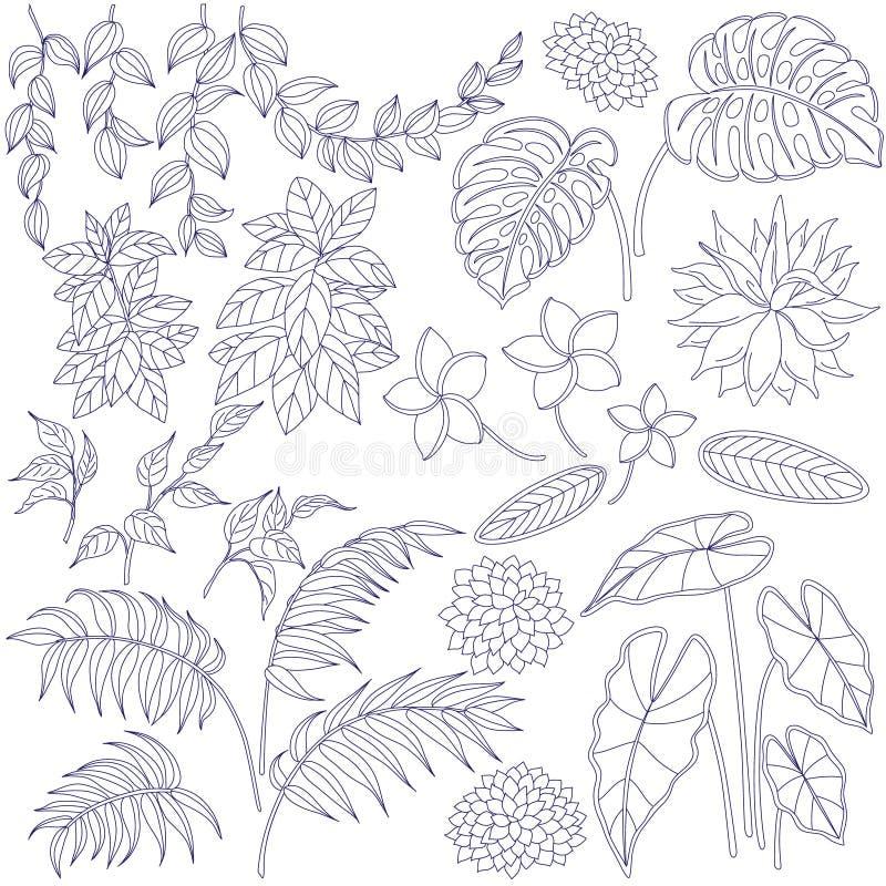 Sistema contorneado de hojas y de flores libre illustration