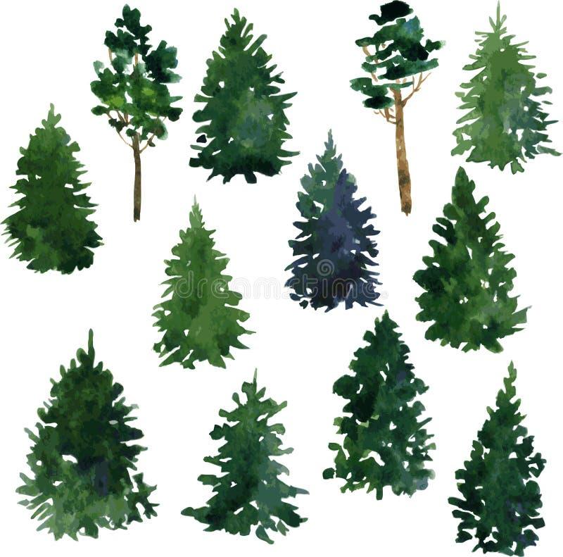 Sistema de árboles de la conífera stock de ilustración