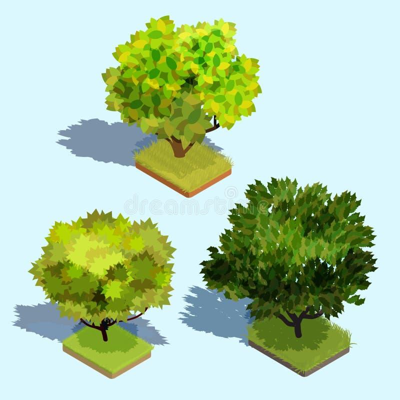 Sistema de árboles isométricos del vector 3D con la sombra y un césped verde ilustración del vector