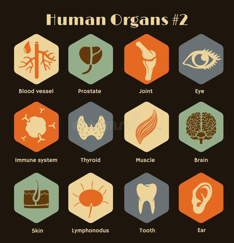 Sistema de órganos humanos y de sistemas de los iconos retros planos ilustración del vector