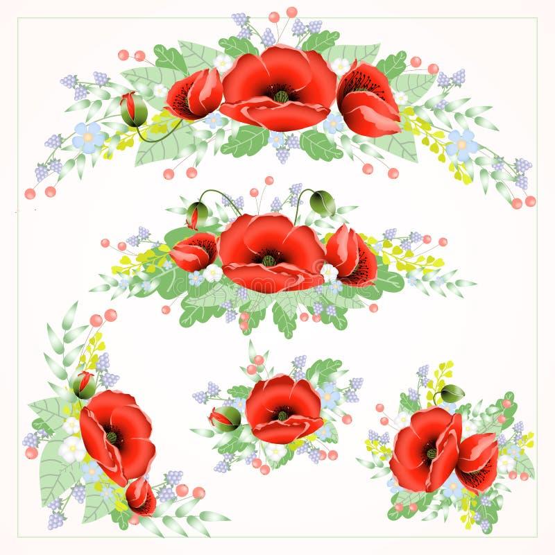 Sistema de alta calidad de flores brillantes del vector de la amapola en diversas formas foto de archivo