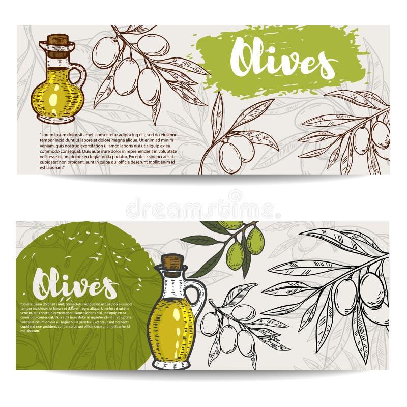 Sistema de aviadores del aceite de oliva Olive Branch stock de ilustración