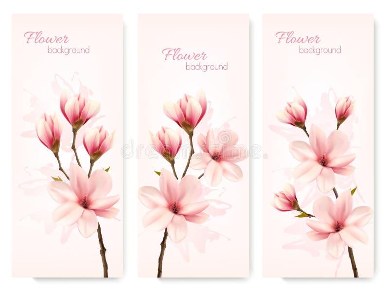 Sistema de banderas de la magnolia de la flor de la naturaleza ilustración del vector