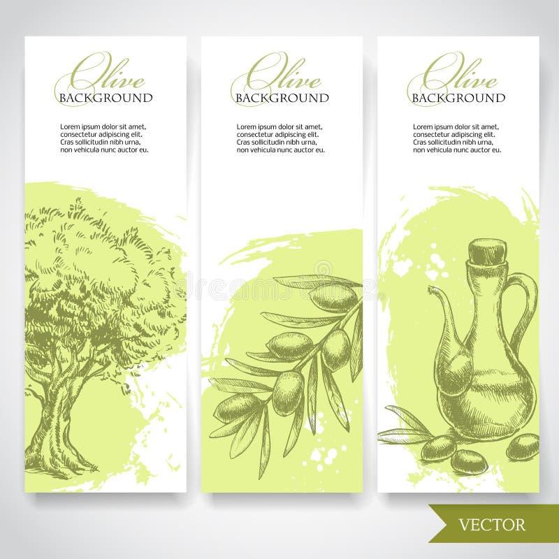 Sistema de banderas verdes olivas dibujadas mano Aceitunas, olivo y rama de olivo stock de ilustración
