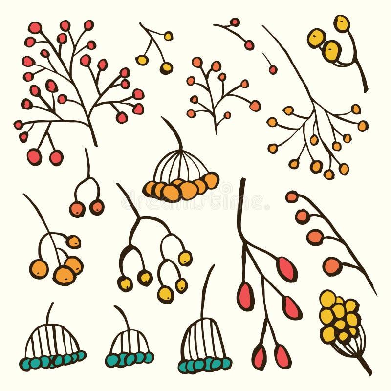 Sistema de bayas dibujado mano libre illustration