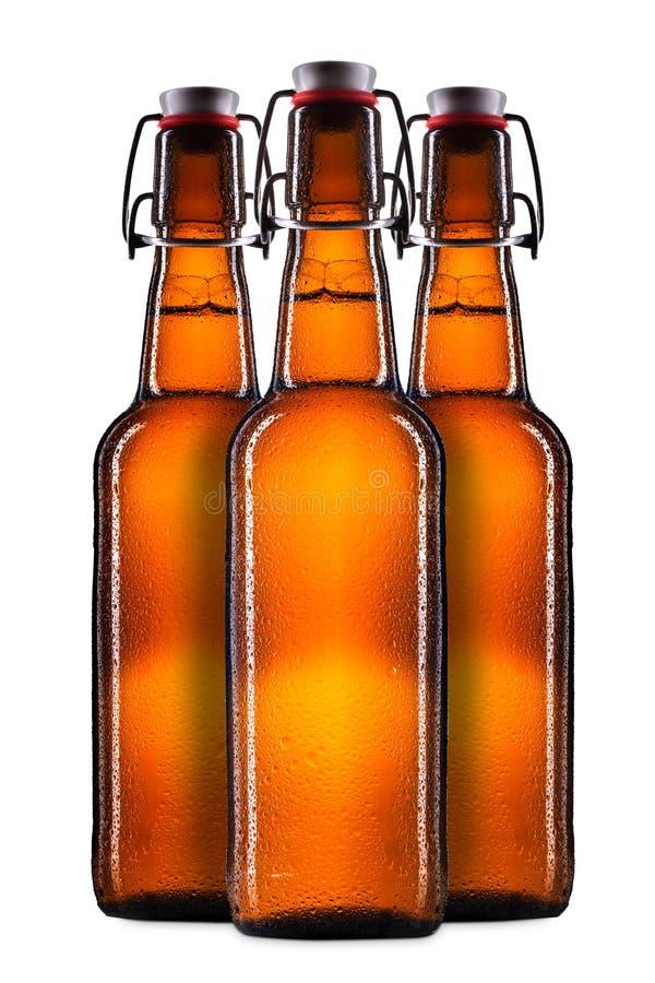 Sistema de botellas de cerveza en blanco fotografía de archivo