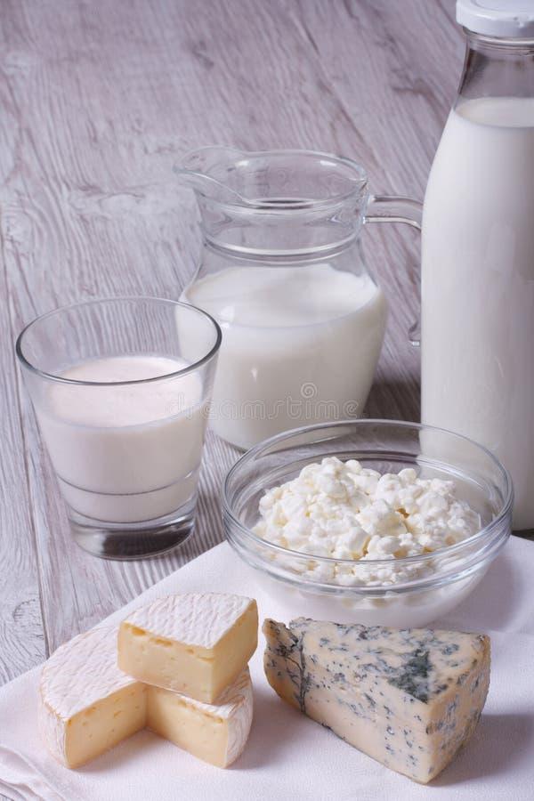 Sistema de brie de los productos, de queso verde, de requesón y de leche foto de archivo