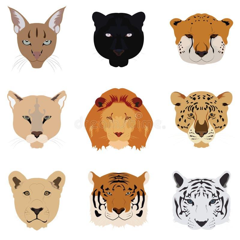 Sistema de Cat Tiger y Lion Vector e icono stock de ilustración