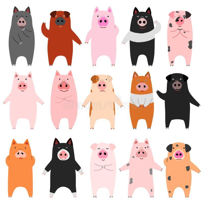 Sistema de cerdos divertidos stock de ilustración