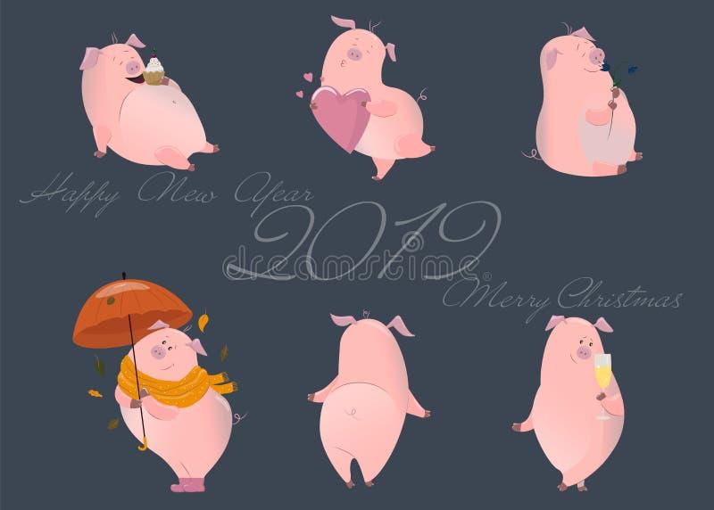 Sistema de cerdos lindos El símbolo de los nuevo 2019 años chino Ilustración del vector en el fondo blanco Elementos para el dise ilustración del vector