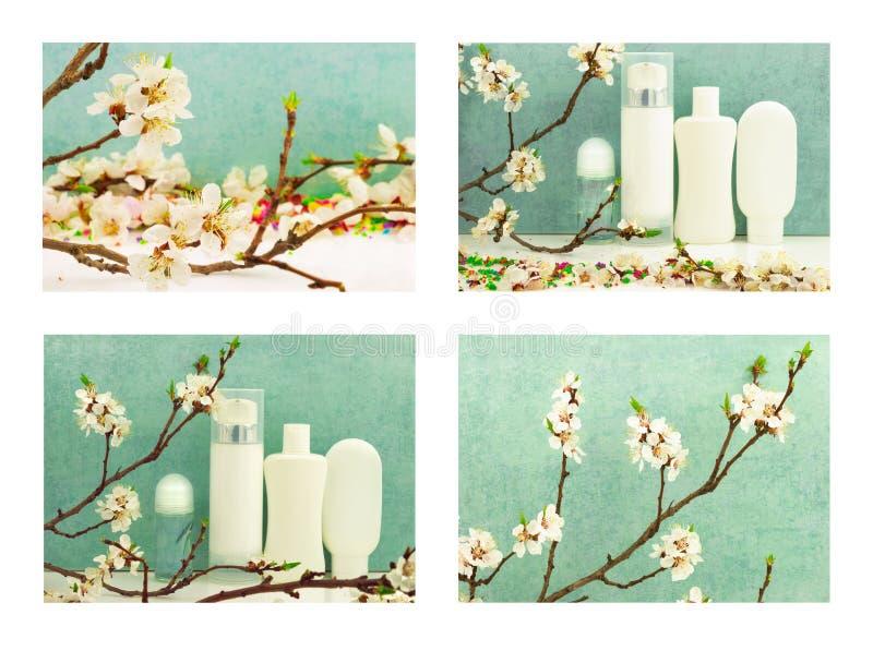 Sistema de composición de la primavera con los productos del cuidado del cuerpo y blo de la primavera fotos de archivo libres de regalías