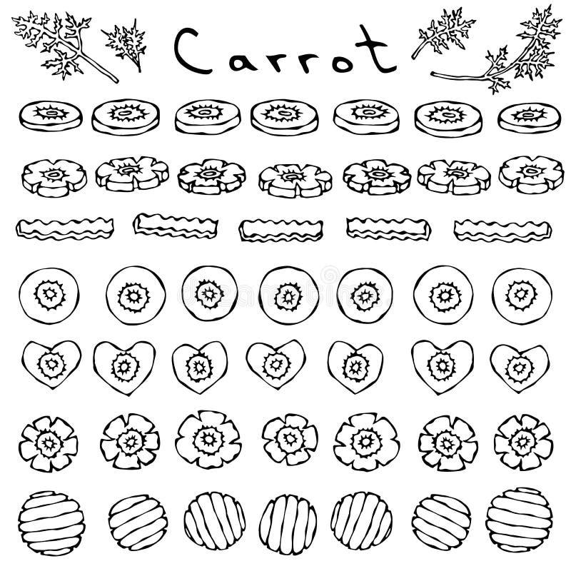 Sistema de cortes y rebanadas de zanahoria de diversa ronda de las formas, flor, corazón, onda Vehículos maduros cocina vegetaria ilustración del vector