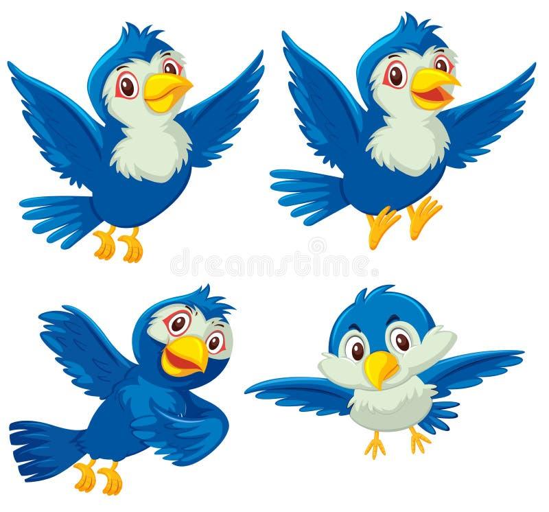 Sistema de cuatro pájaros azules ilustración del vector