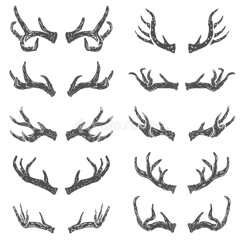 Sistema de cuernos dibujados mano de los ciervos ilustración del vector