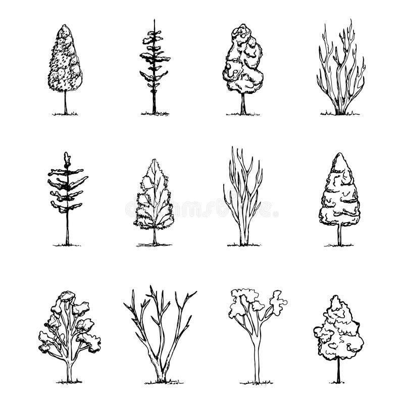 Sistema de dibujos de la mano aislados el vintage de los árboles planta bosquejos ilustración del vector