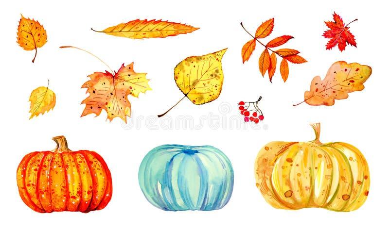 Sistema de diversas hojas y calabazas coloridas de otoño Ejemplo estilizado dibujado mano del bosquejo de la acuarela stock de ilustración