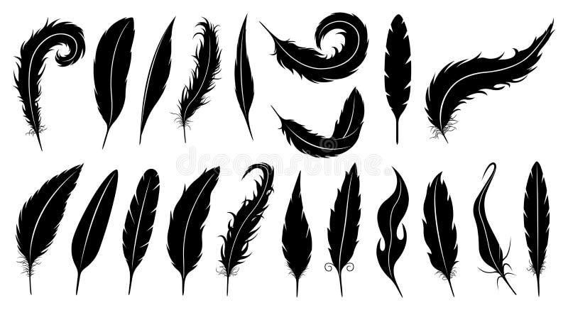 Sistema de diversas plumas stock de ilustración