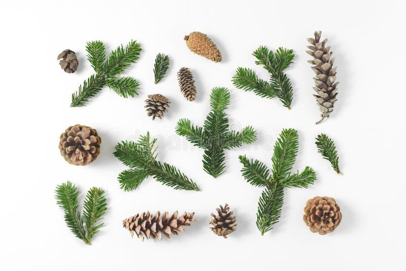 Sistema de diversas ramas imperecederas del pino y del abeto y conos en el fondo blanco Fondo rústico natural Visión superior, en foto de archivo