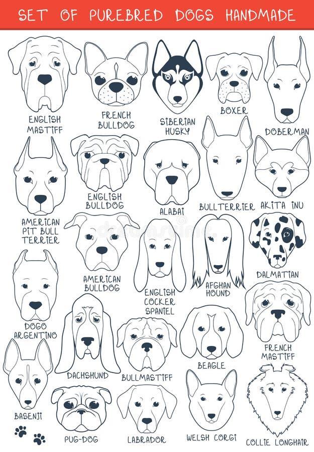 Sistema de 24 diversas razas de los perros hechas a mano Perro principal libre illustration