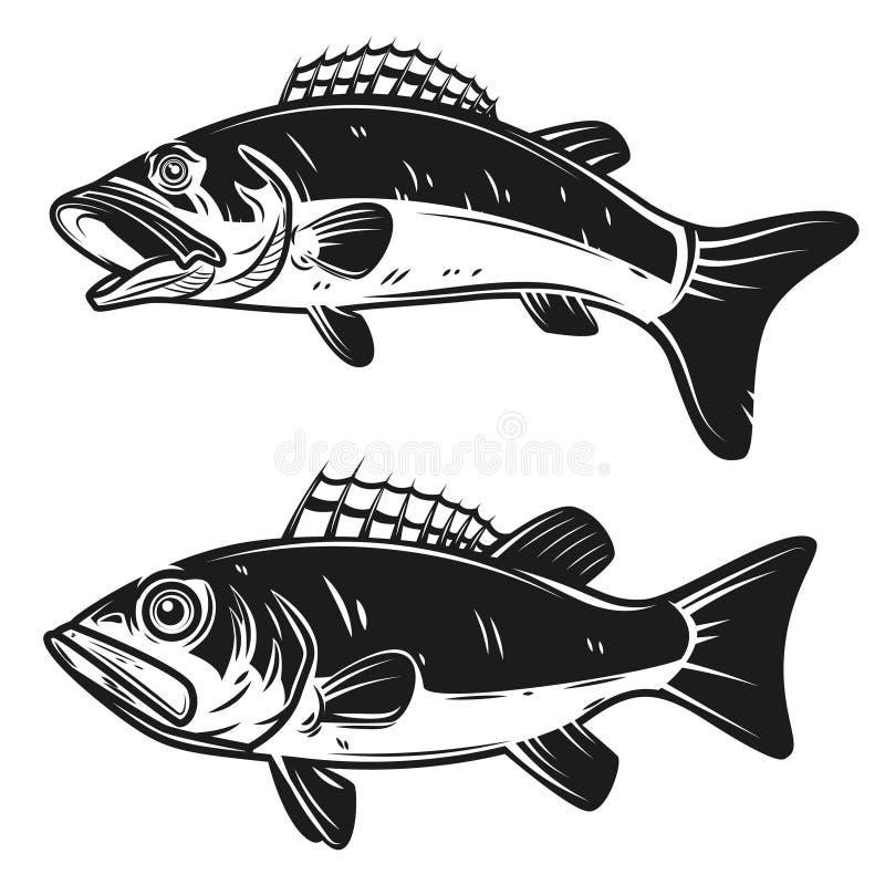 Sistema de ejemplos bajos de los pescados aislados en el fondo blanco Diseñe los elementos para el logotipo, etiqueta, emblema, m stock de ilustración