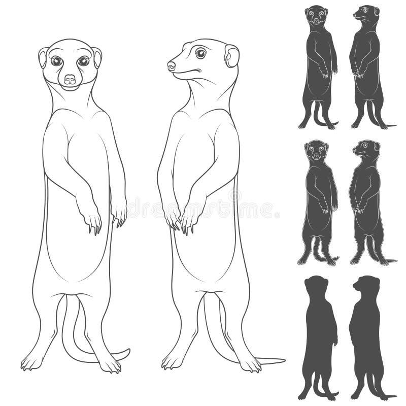 Sistema de ejemplos blancos y negros que representan los meerkats Objetos aislados del vector stock de ilustración