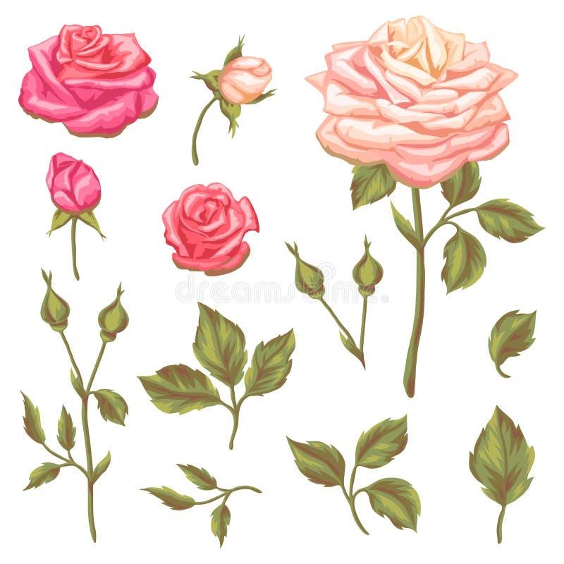 Sistema de elementos florales con las rosas del vintage Flores retras decorativas Objetos para las invitaciones de la boda de la  stock de ilustración