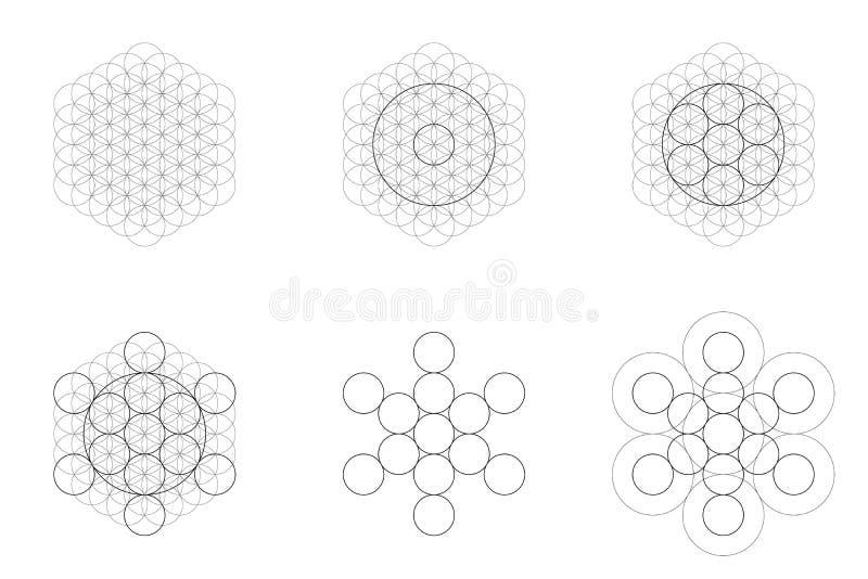 Sistema de elementos y de formas geométricos La flor sagrada de la geometría de la vida y Metatron cubican la transición ilustración del vector