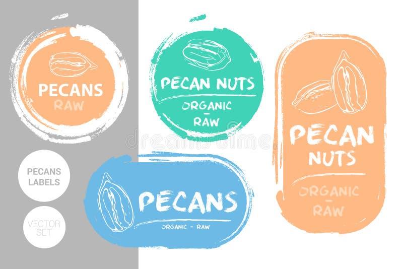 Sistema de etiqueta colorido de las nueces de pacana Formas orgánicas crudas de la insignia de las pacanas Etiquetas creativas de libre illustration