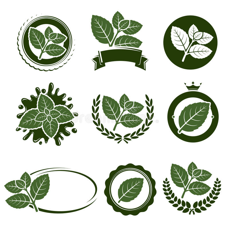 Sistema de etiqueta de las hojas de menta Vector stock de ilustración