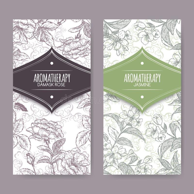 Sistema de 2 etiquetas con el damasco color de rosa y el bosquejo del jazmín stock de ilustración